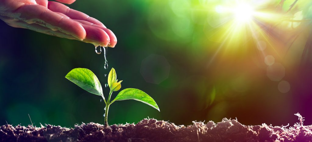 Loi EGAlim salon international de l'agriculture